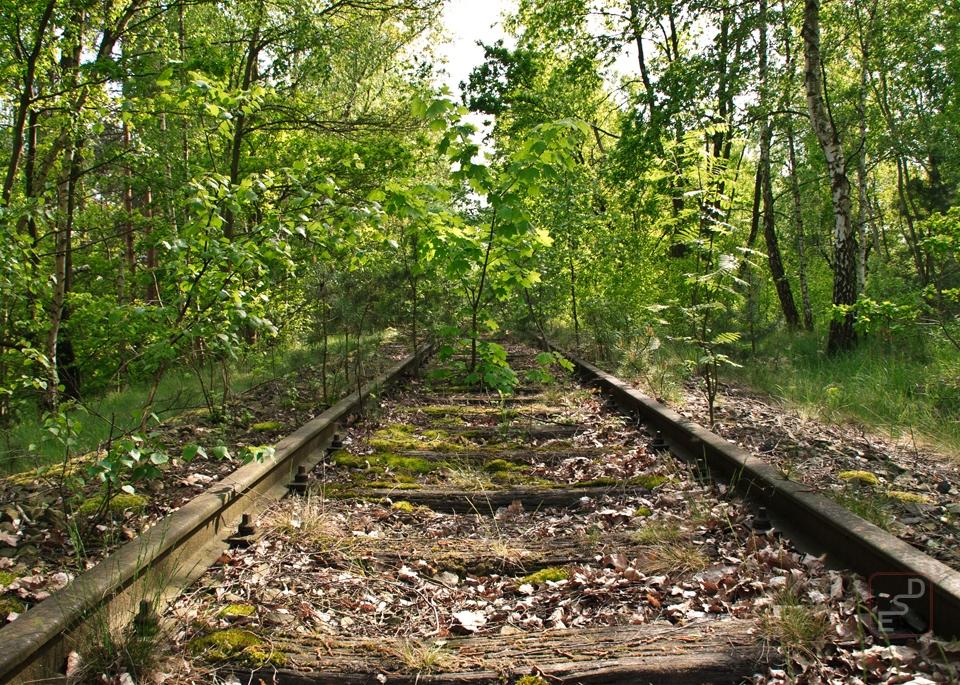 Landschaft_09.jpg